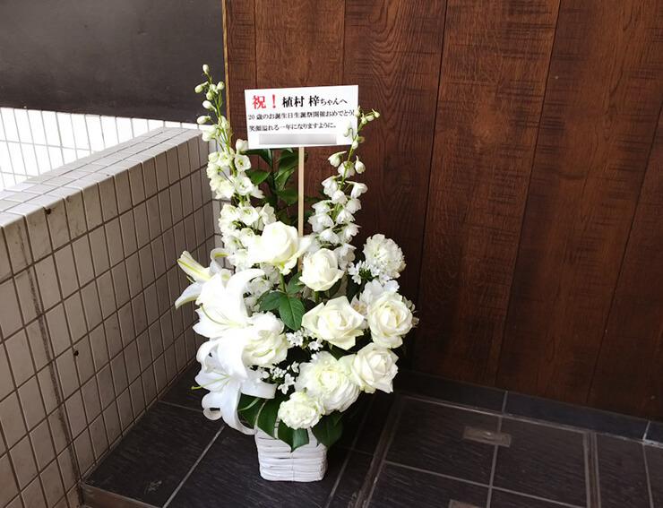 生誕祭祝い花