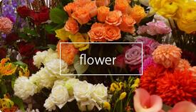 港区花屋新鮮な花々