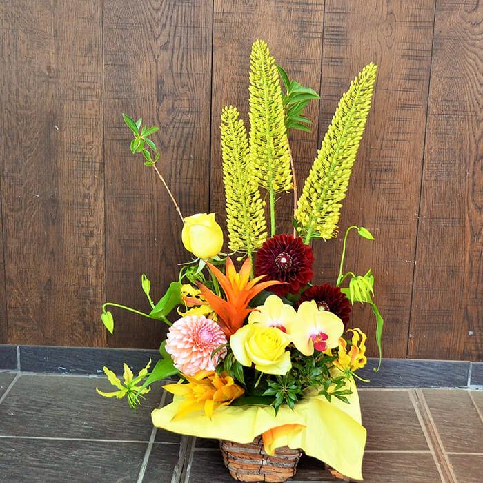 出展祝い花