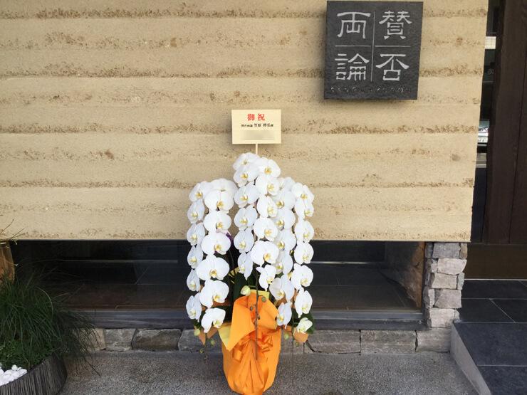 リニューアルオープン祝い胡蝶蘭