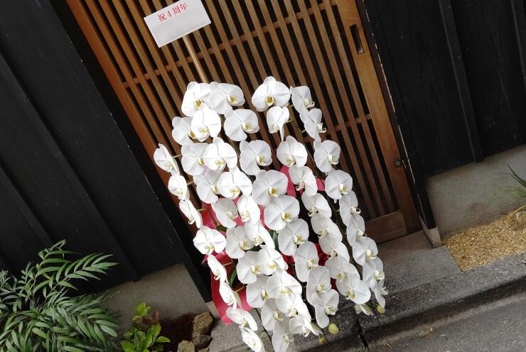 東麻布 天本様の4周年祝いにお届けした胡蝶蘭白3本立て